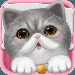 心动小猫 1.19.1