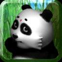 会说话的熊猫