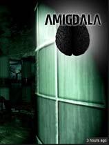 Amigdala 光盘版