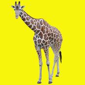 动物叫声 - 大自然的声音音效少儿教育 1.1