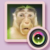 2016猴年新春全民幽默换脸自拍相机  1