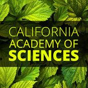 加利福尼亚州科学院 1.2