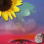 真爱心灵成长音乐(Love∞Earth) 1.05