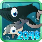海洋宠物2048热潮 - 真棒数学益智佐贺(免费) 1