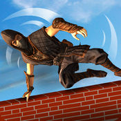 超级忍者战士障碍训练场 - 一个疯狂的功夫培训学校 1.1