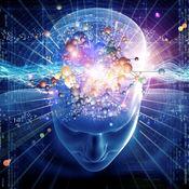 思维导图知识百科:自学指南、视频教程和技巧 1
