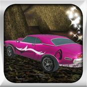超级粉红色赛车游戏 5.1