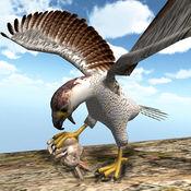 美国野生猎鹰201...