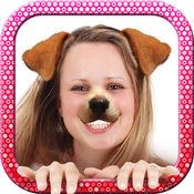面 对 小狗 照片 编辑器  1