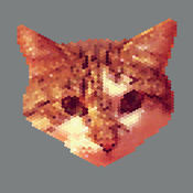 猫成瘾逃生飞扬的扣球免费 - 趣味运动会的所有男婴及童装