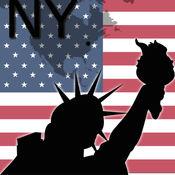 纽约地图 8