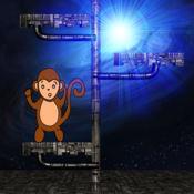 猴子的太空之旅...