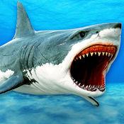 怪物猎鲨:杀手HD鱼 1