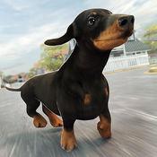 好玩的 狗狗游戏 农场 小镇 萌宠 宝宝 大 冒险 - 开心 狗