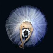 芭蕾舞高清壁纸收藏图库-个性名言主题背景 1