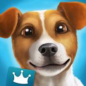 DogHotel Premium - 我的旅馆对拉布拉多犬、梗类犬和斗牛犬开放