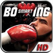 聪明的拳击3D