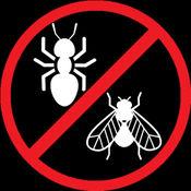 粉碎可怕的虫子!暗恋蚂蚁,苍蝇。 / Smash horrible bugs! Crush ants and flies.