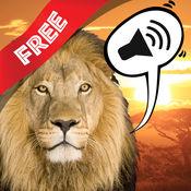 免费 声音游戏野生动物照片
