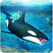 虎鲸模拟器3D - ...