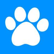 SwiCity – 宠物犬进阶互动教学影音频道 4