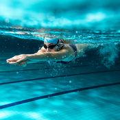 游泳技巧知识百科:自学指南、视频教程和技巧 1