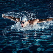 游泳速度训练知...