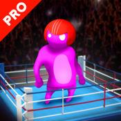 真人摔跤战斗 Pro 1