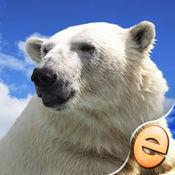 益智欢乐北极熊为孩子们免费 1