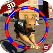 警犬训练特技 2