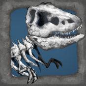 古生物学知识趣味测验:完整的答案与解释 1