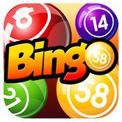 Bingo Flush - 大的困境和真实拉斯维加斯赔率随着多涂抹 1