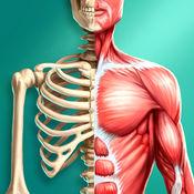 发现人体 Pro---解剖学基础 1.0.0