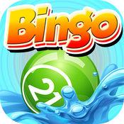 Bingo Marine - ...