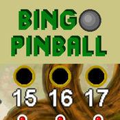 Bingo Pinball D...