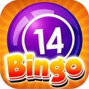 Bingo Shine - ...
