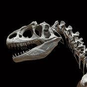 古生物学专业词...