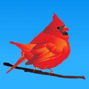 鸟儿的叫声 1.1