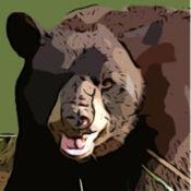 熊的音效,铃声和警报 2