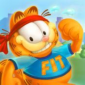 加菲猫健康日记