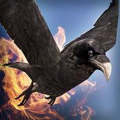 神奇 小鸟 恶龙 ...
