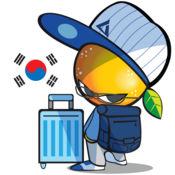 OrangeTour 韩国旅游 1