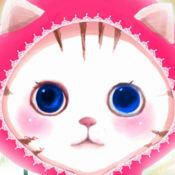 小猫保健 1