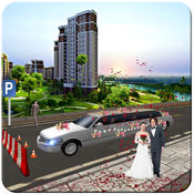豪华轿车与停车场的婚礼运输 1
