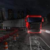 夜车停车司机3D - 公路车库 1