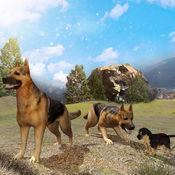 野狗模拟器2016年 1