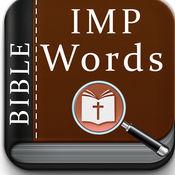 圣经 - IMP词搜索拼图 - 特别的圣诞单词搜索的挑战,我们所有的朋友,以提高圣经单词搜索动力