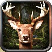 鹿捕食者3D动物...