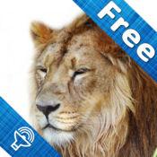 儿童动物园,动物声音和图片—丛林野生动物,农场宠物, 儿童学习,高清游戏,互动卡片