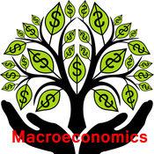 宏观经济学专业词典和记忆卡片-视频词汇教程和背单词技巧